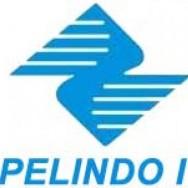 Lowongan PT Pelindo I – Tenaga Pandu