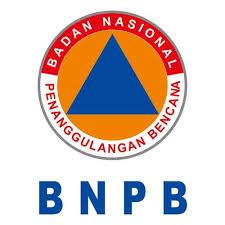 CPNS BNPB