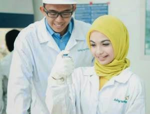 Lowongan MR PT Bio Farma