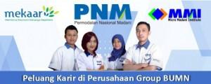 Lowongan PT PNM Via UNAIR