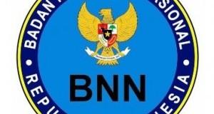 Lowongan Non CPNS BNN Provinsi Sumsel