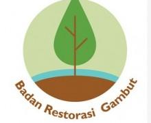 Lowongan Badan Restorasi Gambut (BRG) Indonesia