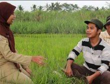 Pengumuman Persiapan Pendaftaran Pendamping Desa Kementerian PDTT