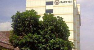Lowongan Pegawai PPNPN Badan Pengawas Tenaga Nuklir (BAPETEN)