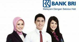 Lowongan Bank BRI Kantor Cabang Muara Teweh