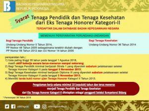 Persyaratan Tenaga Pendidik dan Kesehatan dari Eks Honorere K2