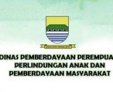Lowongan Honorer Dinas Pemberdayaan Perempuan Perlidungan Anak dan Pemberdayaan Masyarakat Kota Bandung