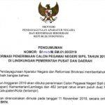 Website Resmi Pendaftaran CPNS 2019