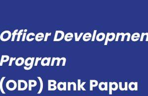 Lowongan PT Bank Pembangunan Daerah Papua