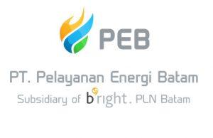 Lowongan PT Pelayanan Energi Batam