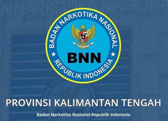 Lowongan BNN Provinsi Kalteng